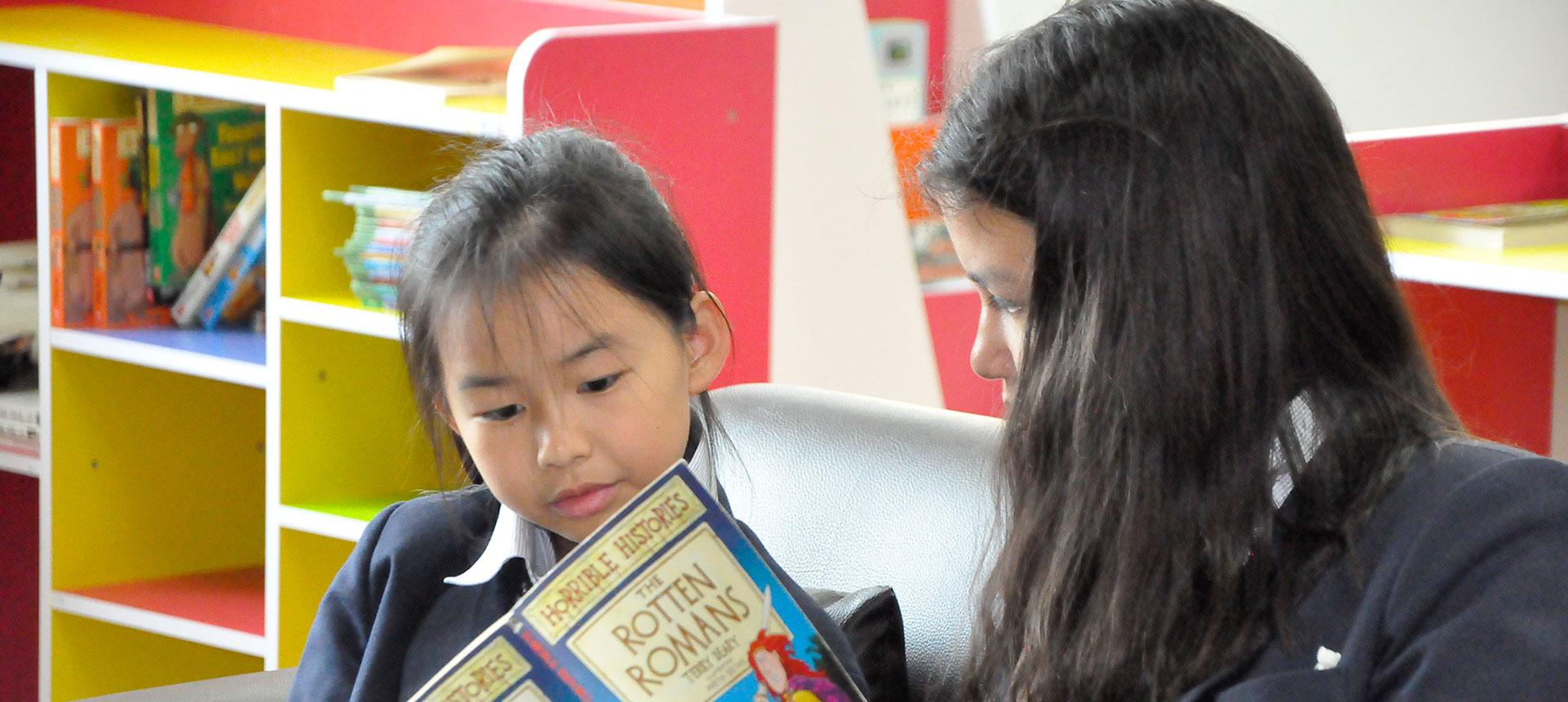ks2-primary-library